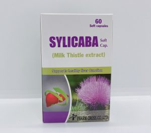 Sylicaba - Giải Độc Và Hạ Men Gan