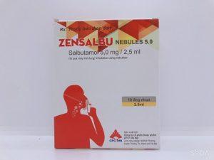 Zensalbu Nebules 5.0 - Điều trị hen cấp tính